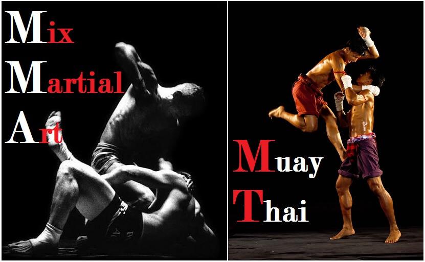 Mixed-Martial-Arts-or-Muay-Thai