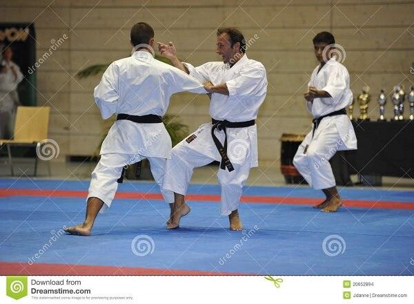 karate katas1